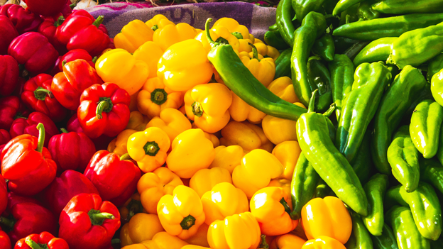 Paprika rot gelb grün