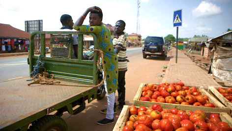 Rotes Gold - Die Geheimnisse der Tomatenindustrie