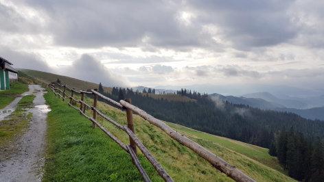 Arbeit auf der Alm in den steirischen Alpen