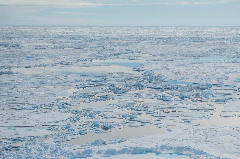 Eisnachschub für die Arktis