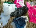 Weggeworfene Plastiksackerl hängen in einem Zaun