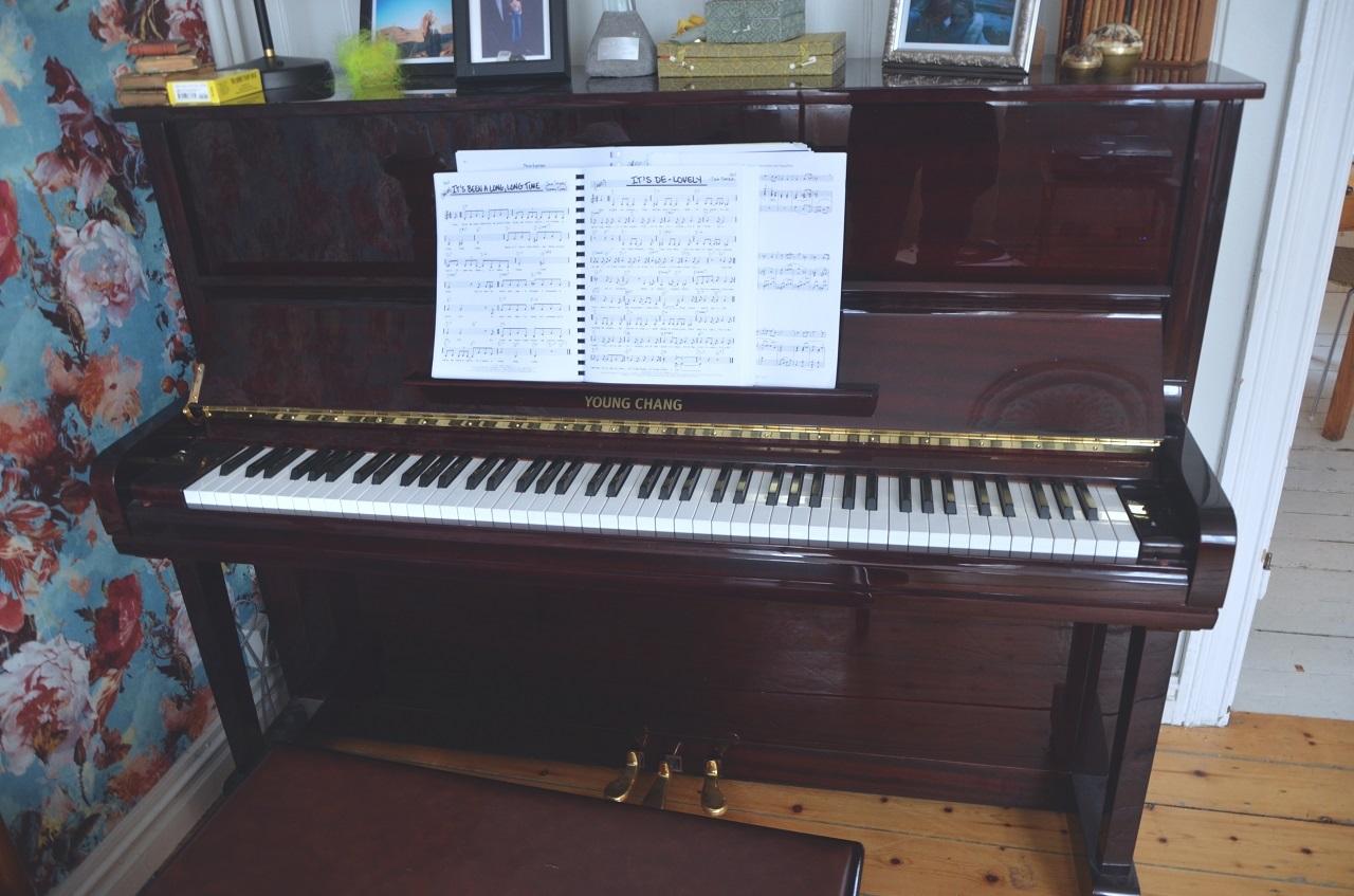 privates Piano, Reykjavik
