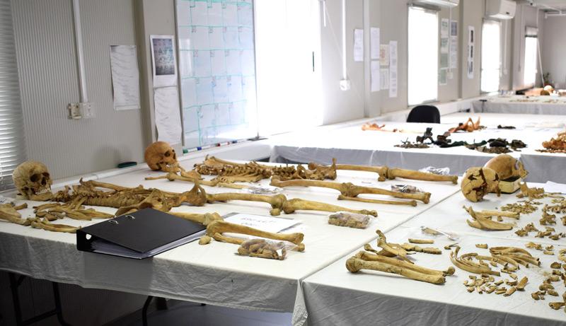 Das forensisch anthropologische Labor