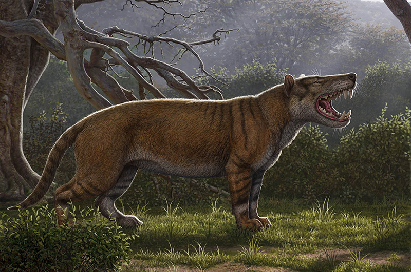 Das löwenartige Riesen-Raubtier Simbakubwa kutokaafrika