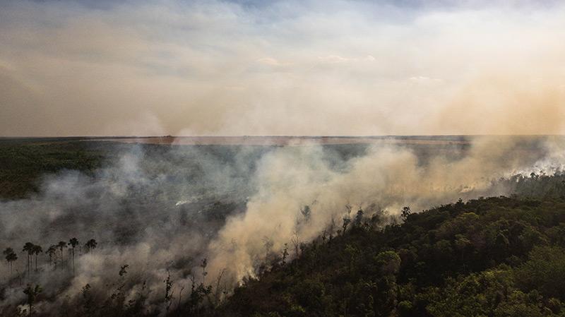 Brennender Urwald in Brasilien