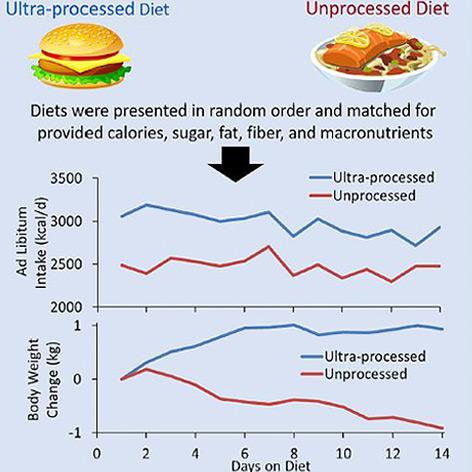 Grafik zu den zwei Ernährungstypen