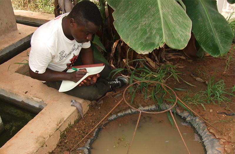 Studien Ko-Autor Etienne Bilgo beim Überprüfen eines Moskito-Brutplatzes