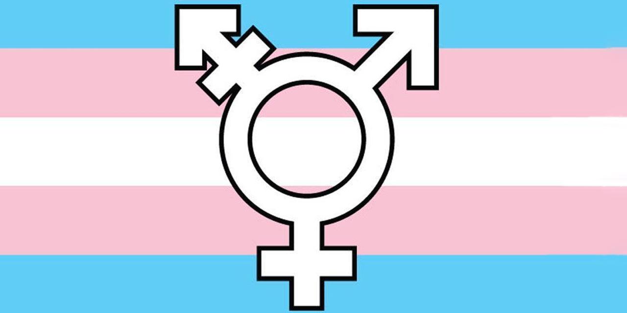 Transgender-Fahme in Baby-Blau, rosa und weiß, in der Mitte das Transgender-Symbol