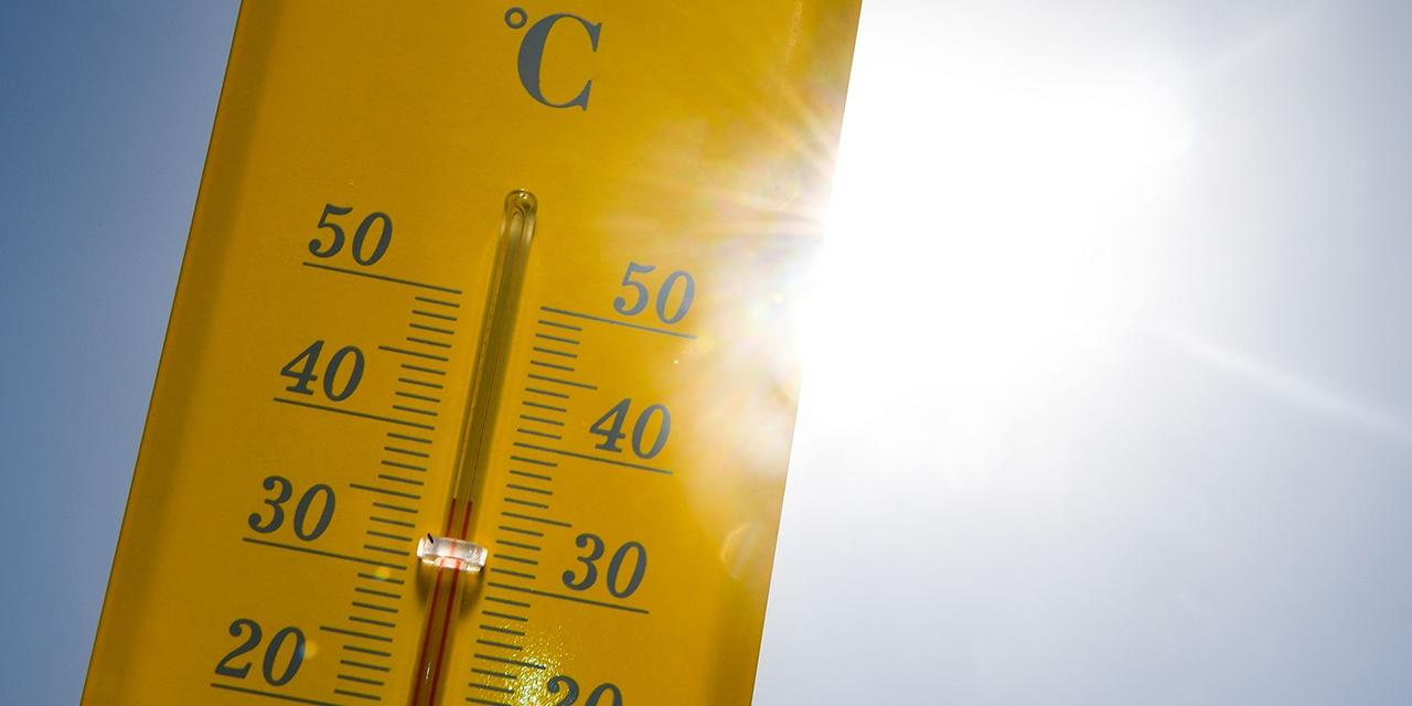 Thermometer 36 Grad