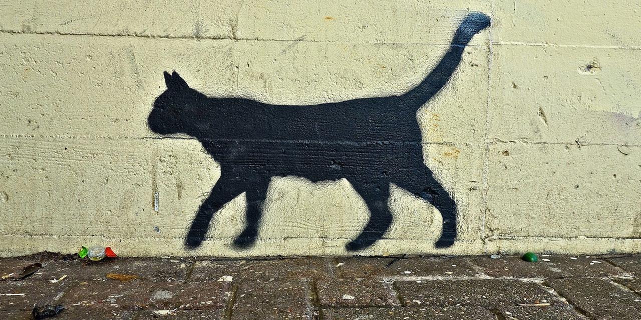 Graffiti einer schwarzen Katze