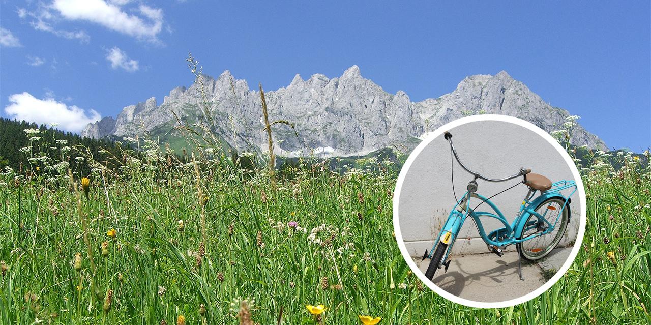 Fahrrad vor Landschaft