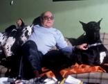 Alltagsgeschichte  Denn Hundeherzen schlagen treu  Originaltitel: Dokumentation (AUT 1991)