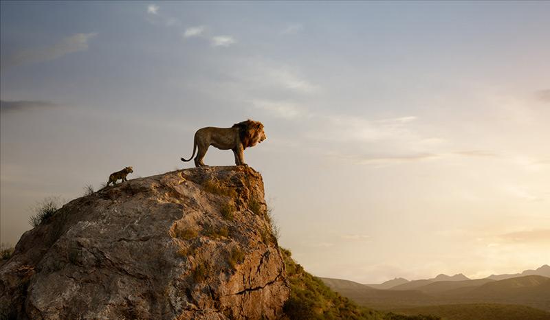 """Löwe und Jungtier: Film Still aus """"König der Löwen"""""""