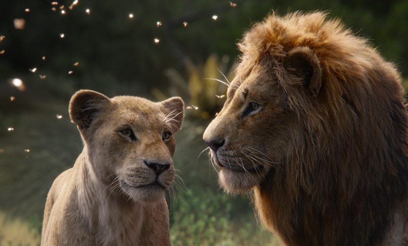"""Löwenweibchen und Löwenmännchenn: Film Still aus """"König der Löwen"""""""