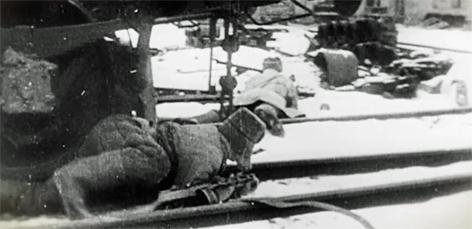 Hitlers zirkel des bösen 1939 bis 1945