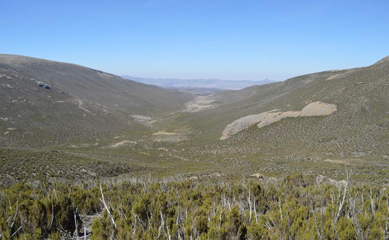 Bale Mountains in Äthiopien