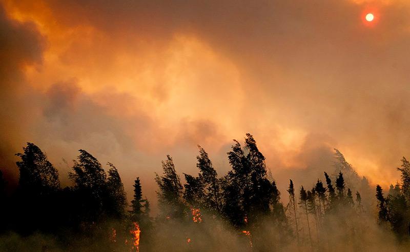 Waldbrand in Alaska