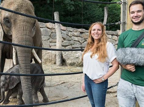 """Elefantenjunges Kibali wird """"belauscht"""""""