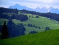 guten morgen österreich wort der woche buchstaben