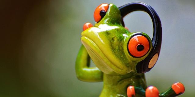 Frosch mit Kopfhörern