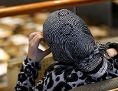 EIne junge Frau mit Kopftuch auf den Zuschauerbänken im Parlament