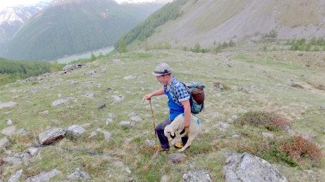 Hirtenleben im Ötztal - Mit den Schafen über die Gletscher