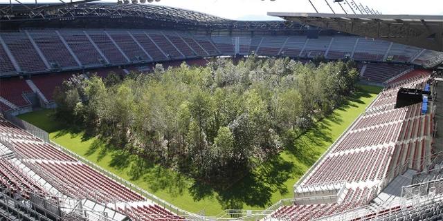 Wald im Wörthersee Stadion