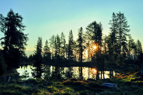 Universum Lungau - Wildnis im Herzen der Tauern