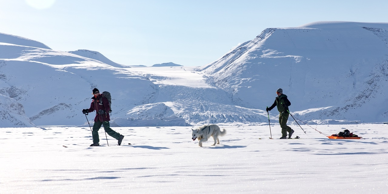skiing the fjords