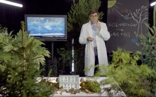 Quantensprung <br /> Der Wald und das Klima