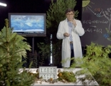 Quantensprung  Der Wald und das Klima