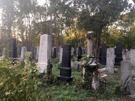 treffpunkt medizin  Den Tod ins Leben holen