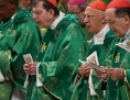 Amazonien Synode