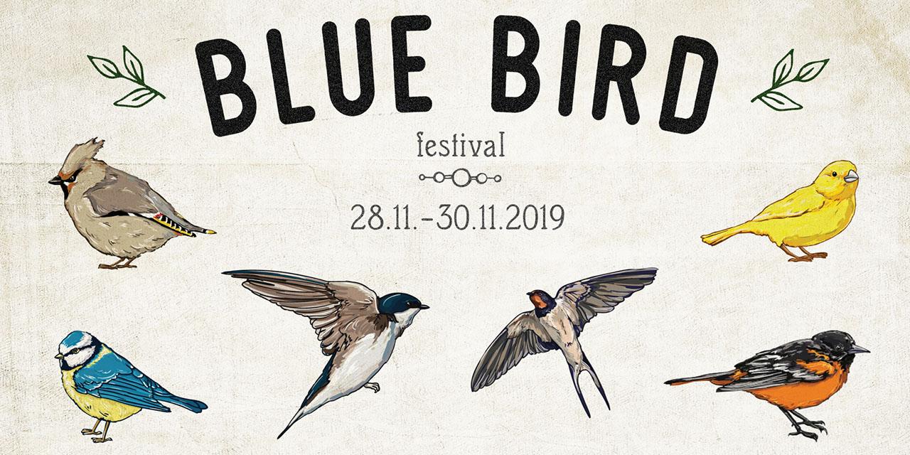 Grafik Blue Bird Festival