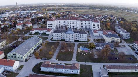 Die Österreicher und ihre Wurzeln  Flucht und Asyl nach 1945 (4/4)