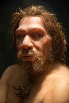Rekonstruktion des Neandertalers