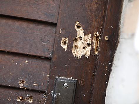 Die zerschossene Tür der Synagoge in Halle, Deutschland