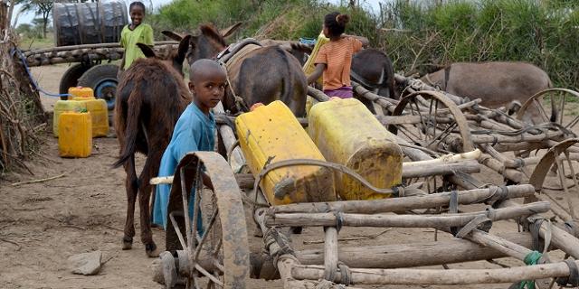 Kinder und Eselwagen