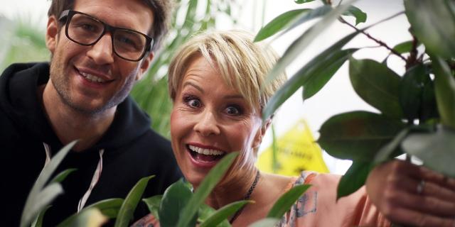 RTL-Dschungelcamp: Sonja Zietlow und Daniel Hartwich als Moderatoren
