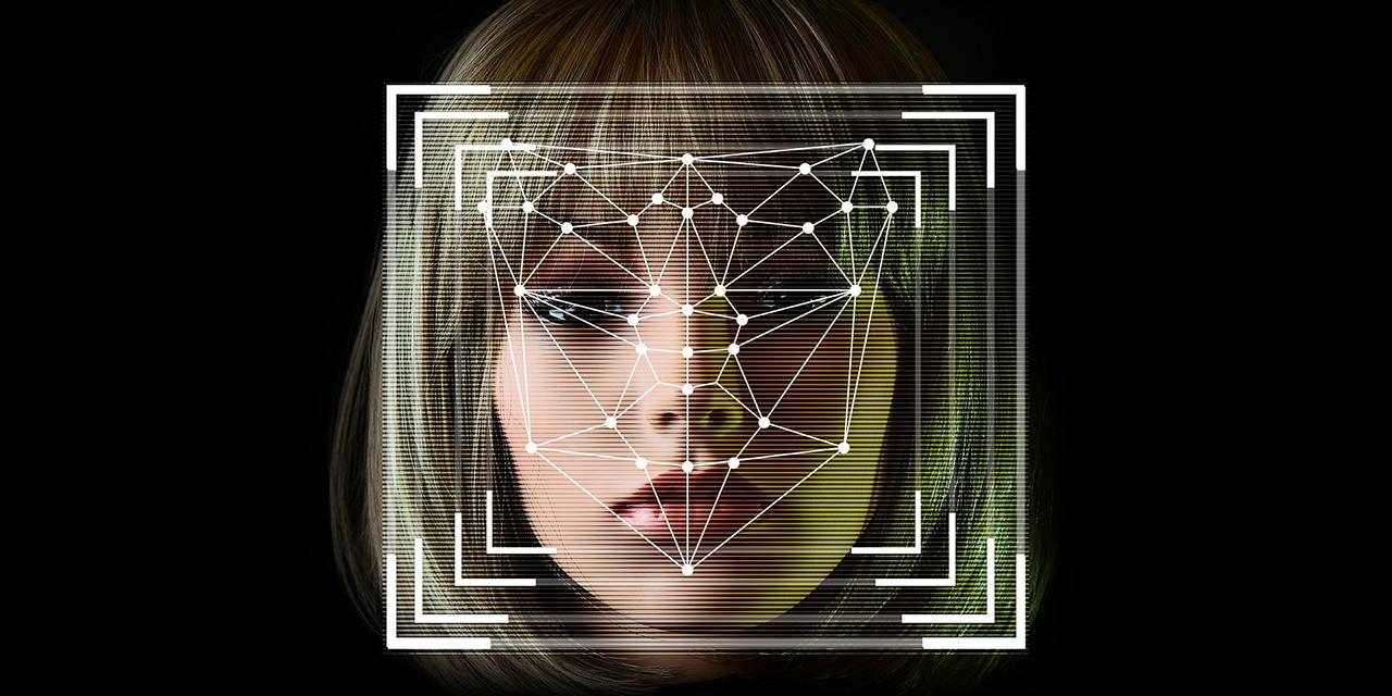 Gesichtserkennungsgitter