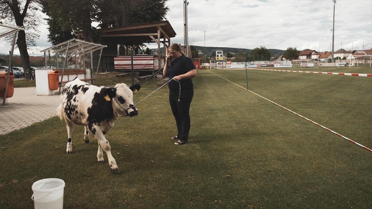 """Eine Kuh an der Leine mit ihrer Bäurin - Filmstill aus dem Dokumentarfilm """"Der schönste Platz auf Erden"""""""