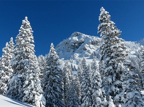 Läuferspitze Tirol