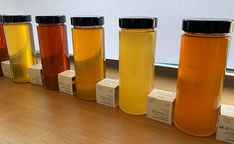 diverse Honigsorten in Gläsern