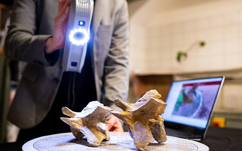 Überreste des Sauriers werden mit einem Strukturlichtscanner gescantt