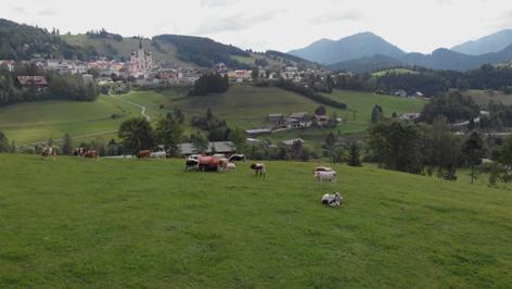 Heimat österreich: leben im mariazellerland