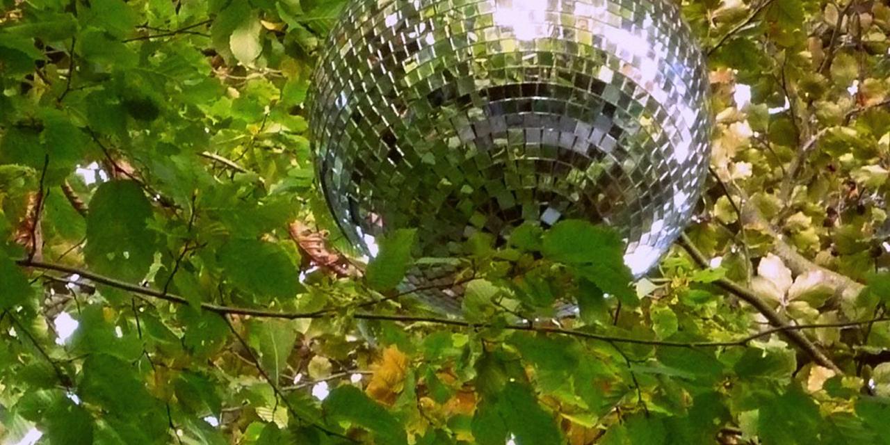 Discokugel, in einen Laubbaum gehängt