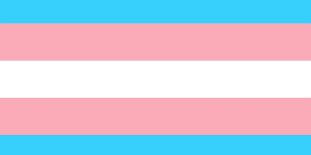 Transgender Flagge