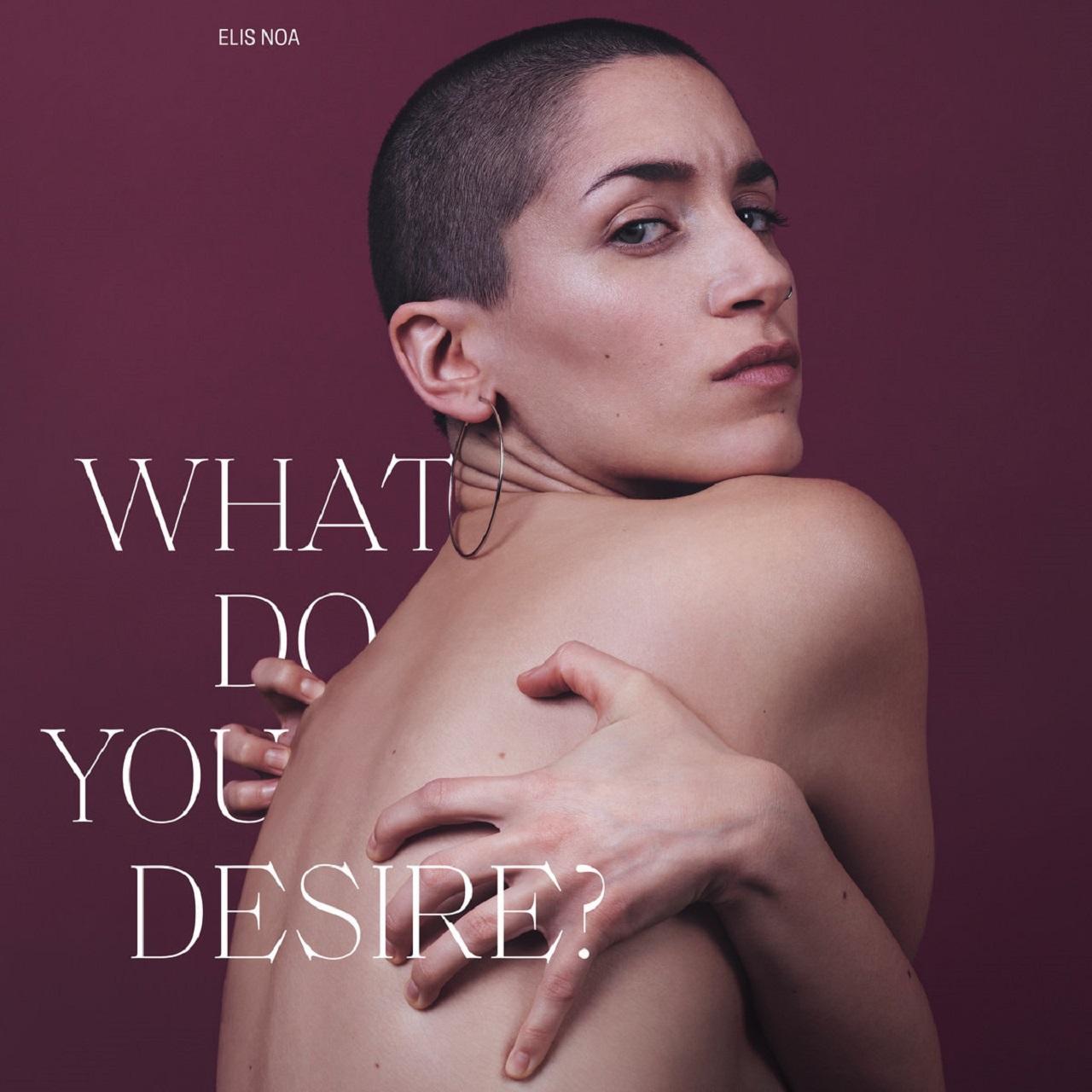 """Albumcover """"What Do You Desire?"""" von Elisa Noa"""