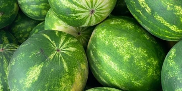 Viele Wassermelonen