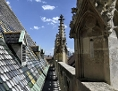 Dach des Stephansdoms